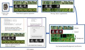 Animal Speed Comparison Chart Animal Scanner Software For Classifying Humans Animals