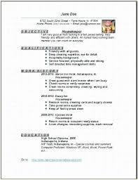 Housekeeping Resume Best Hotel Housekeeping Resume Cheerful Hospital Housekeeping Resume