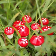 10 miniature mushroom fairy garden ornament dollhouse pot decor diy craft ts