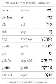 English To Hebrew Animals Vocabulary Eagle Elephant Elk