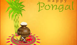 pongal short paragraph essay on pongal festival for students and pongal pongal acircmiddot essay