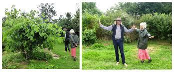 Plantation Designs Devon Tagorean Futures Another Oasis In Devon Tagoreanworld