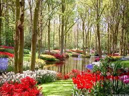 Desktop Wallpaper Hd Flowers Landscape ...
