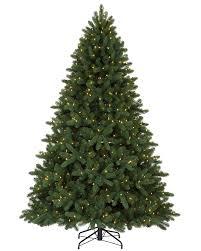 8 Ft Alberta Spruce Evergreen Clear Lit Tree  Christmas Tree MarketPre Lit Spruce Christmas Tree