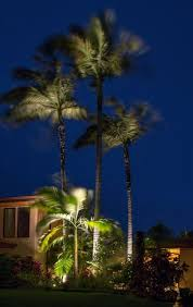 tropical outdoor lighting. palm tree landscape lighting tropical outdoor b
