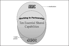 Mapping The Ten Essential Shared Capabilities With The