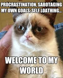 PROCRASTINATION, SABOTAGING MY OWN GOALS, SELF LOATHING... WELCOME ... via Relatably.com