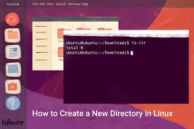 Create A Directory How To Create Directories In Linux With The Mkdir Command