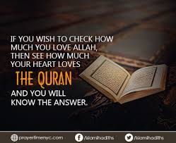 Quran Quotes Beauteous Quranquotesforwhatsapp