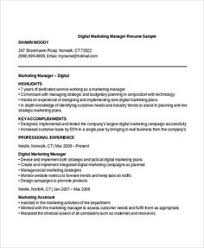 I Lied On My Resume And Got The Job Best Of Development Manager Resume Template Cover Letter Professional