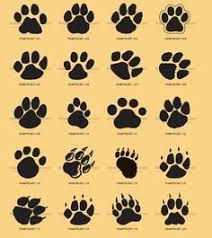 dog pictures to print. Fine Pictures Download Free Paws Tattoo Designs For Women  Kids And Everybody Paw Print  Clip  In Dog Pictures To Print