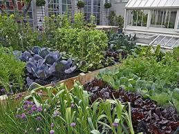60 000lbs of organic food per acre