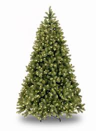 8ft Pre-lit Bayberry Spruce Feel-Real Artificial Christmas Tree