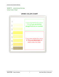 Urine Color Chart In Word And Pdf Formats