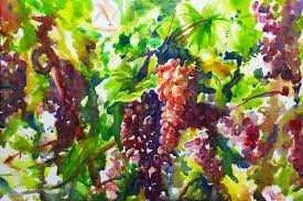 gvines watercolor painting in italy