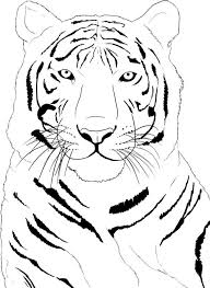Small Picture 95 best Animal coloring books images on Pinterest Coloring books
