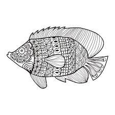 Vissen Hand Getrokken Doodle Stijl Ontwerp Voor De Kleurplaat Boek