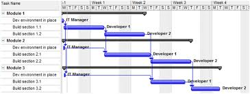 Project Schedules Explaining Hammocks Loe And Summary Activities For Project