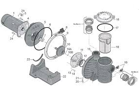 similiar sta rite pump repair parts keywords sta rite max e pro pump replacement parts