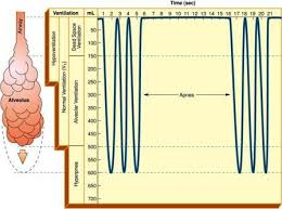 Types Of Breathing Patterns Abnormal Breathing Patterns