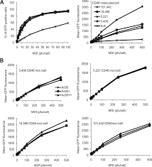 to CD46 Adenovirus Vectors with Increased Affinity In Vitro and In Vivo  Properties of