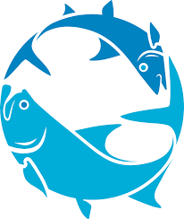 Online Tarpon Weight Calculator Bonefish Tarpon Trust