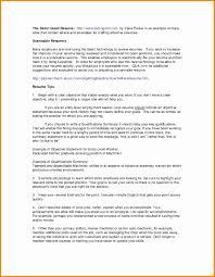 Marketing Executive Resume Sample Executive Summary Resume Example Template Valid Marketing Executive 32