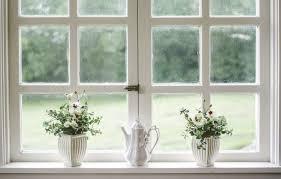office indoor plants. Indoor Plants Homes.jpg Office