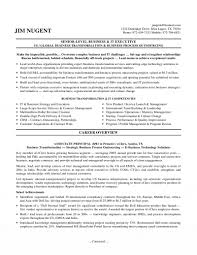 Sample Executive Resume Executive Resumes 100 Sample Executive Resumes Resume Formats And 1