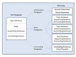 organizational structure essay organizational structure essay allen eubank google inbox for productivity alt text google organizational structure essays