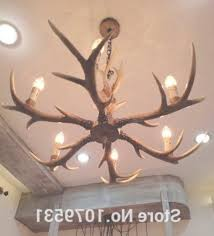 outstanding real antler chandelier deer antler cabinet pulls regarding real antler chandeliers view 29