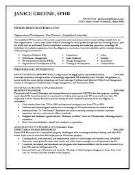Free Download Executive Resume Template
