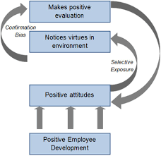 frontiers exploring selective exposure and confirmation bias as frontiersin org