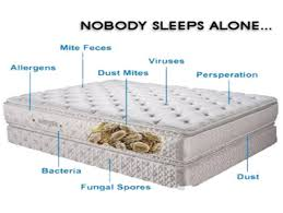 Importance of keeping your mattress clean