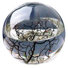 ecosphere closed ecosystems review