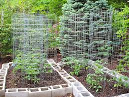 Small Picture backyard 26 Vegetable Garden Design Ideas Also Easy Vegetable