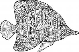 Small Picture Goldfish Coloring Page KidsPressMagazinecom
