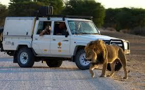 car al south africa pare