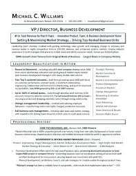Business Development Manager Template Managers Resume Marketing Job ...