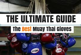 Ultimate Guide To The Best Muay Thai Gloves Updated 2018