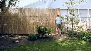installing a bamboo friendly fence on chain link chain link fence privacy screen c45