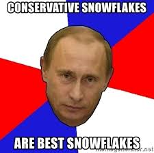 Image result for conservative snowflake