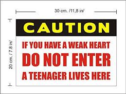 Great N1238 Funny Teenager Bedroom Door Vinyl Sticker Sign U0026quot;Caution Do Not  ...