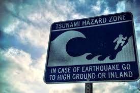 local tsunami warning system ...