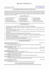Advertising Account Executive Sample Resume Personal Care Worker
