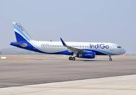 Indigo Airlines Login Indigo Airlines Under Investigation After Passenger Who Complained