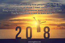 New Year Resolution Quotes Interesting Happy New Year 48 Quotes Funny New Year Resolution Quo Flickr