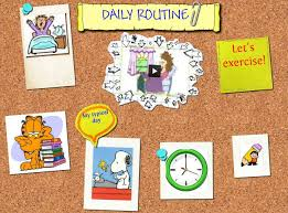 essay on daily routine daily routine publish glogster