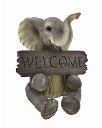 amazon com adorable pachy princess baby elephant welcome