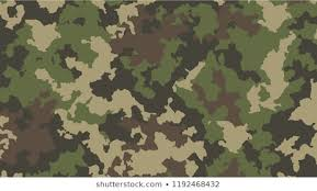 <b>Camouflage</b> Pattern Images, Stock Photos & Vectors | Shutterstock